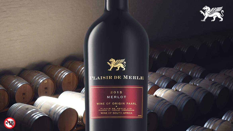 Plaisir de Merle Merlot Awarded as one of the Best